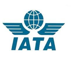 Cape Town to host global air transport summit
