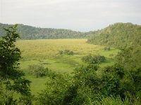 Njiro