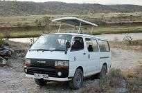 Westkatesafaris and car hire