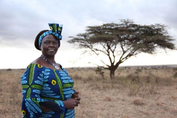 African Union honours Wangari Maathai