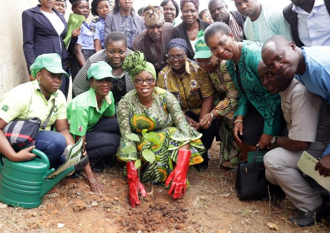 Lagos to plant half a million trees