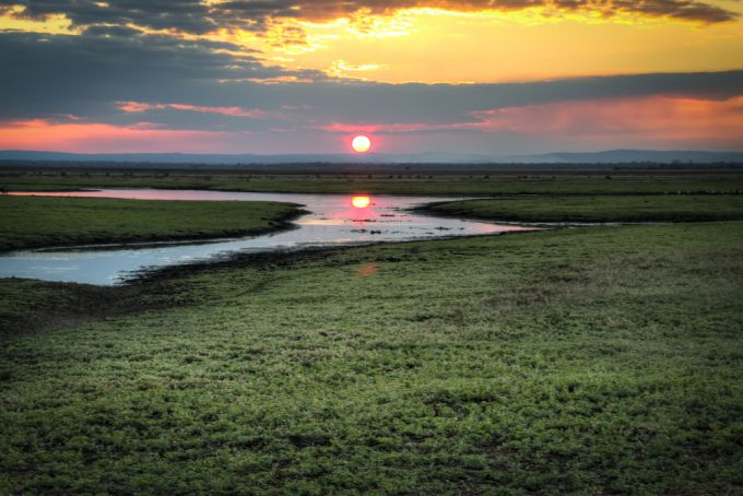 The rapid recovery of Gorongosa National Park in Mozambique