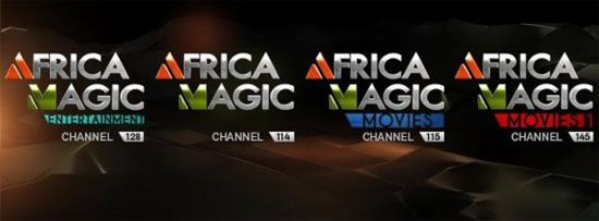 Africa Magic Viewers Choice Awards - image 3