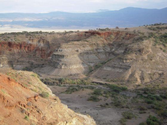 Laetoli site to be managed by Ngorongoro Conservation - image 2