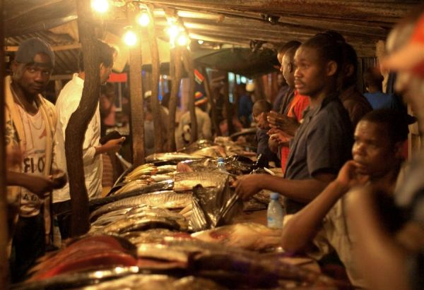 Japan funds new fish market in Maputo - image 2