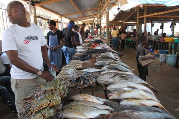 Japan funds new fish market in Maputo - image 1