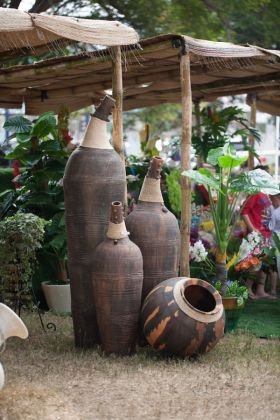 Ghana Garden and Flower show - image 2
