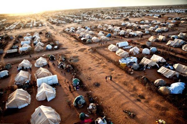 Kenya takes measures against Somalis - image 4
