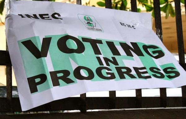 Buhari's party makes gains in local elections - image 4