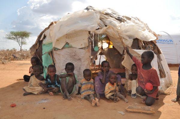 Kenya takes measures against Somalis - image 2