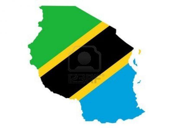 Tanzanian referendum postponed - image 4