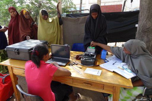 Tanzania estimates voting figures - image 3