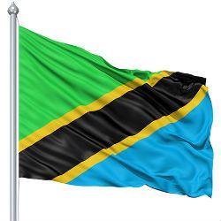 Tanzania estimates voting figures - image 1