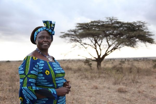 African Union honours Wangari Maathai - image 1