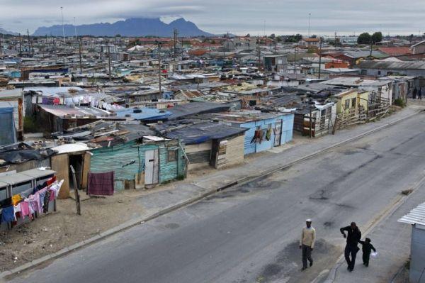 Cape Town tackles rats - image 2