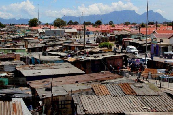 Cape Town tackles rats - image 1