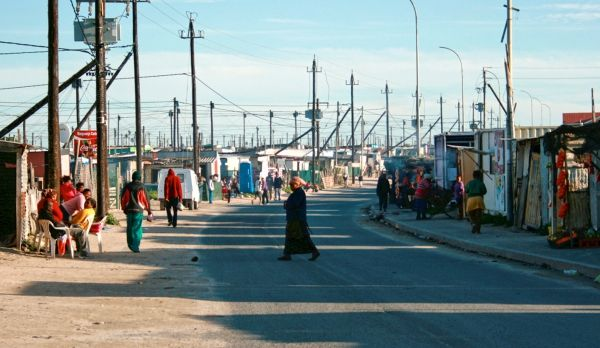 Cape Town tackles rats - image 3