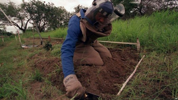 Mozambique declared free of land mines - image 2