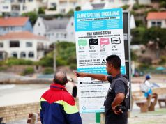 Cape Town shark app