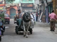 Cairo without carts