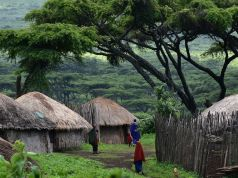Arusha Women Unite to Improve Tourism and Uplift Communities