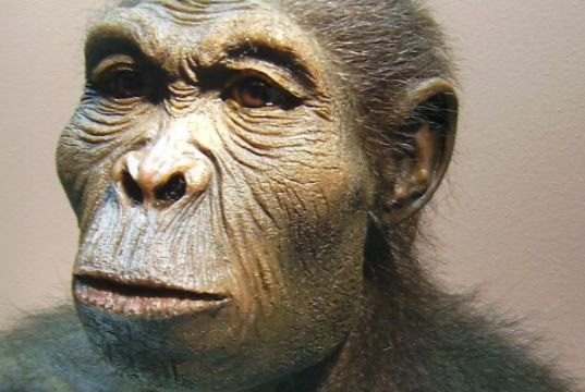 Conference on origins of early hominins in East Africa
