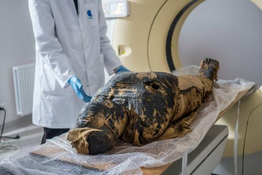 Surprise discovery of first pregnant Egyptian mummy