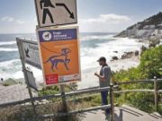 New rules for dogs on Cape Town beaches