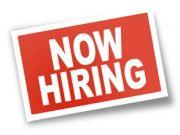 365 Online Jobs (abood)
