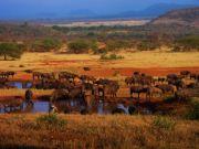 Tanzania national parks increase fees