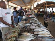 Japan funds new fish market in Maputo