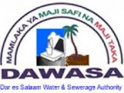 Dar es Salaam losing water to leakages and theft