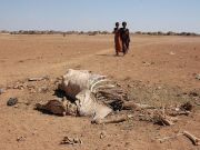 Ethiopia faces worst drought in 30 years