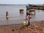 Lake Victoria water unsafe to drink